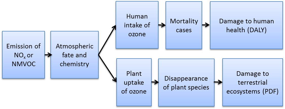 picture of Cause-effect pathway
